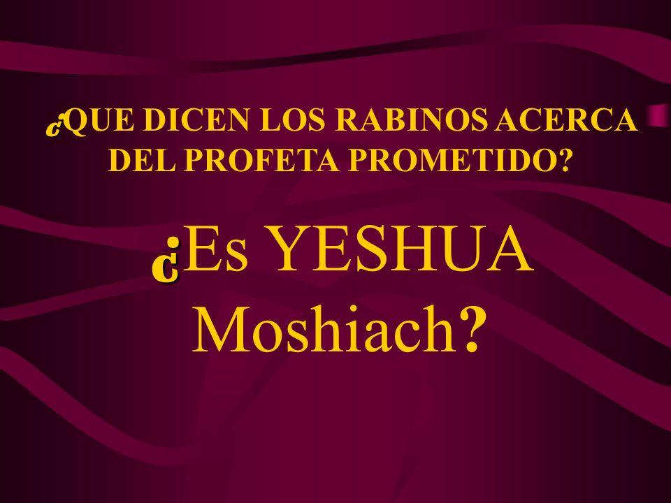 ¿ ¿ QUE DICEN LOS RABINOS ACERCA DEL PROFETA PROMETIDO? ¿ ¿ Es YESHUA Moshiach?