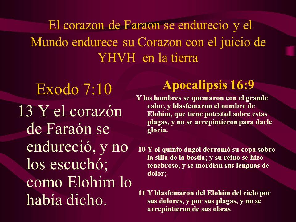 El corazon de Faraon se endurecio y el Mundo endurece su Corazon con el juicio de YHVH en la tierra Exodo 7:10 13 Y el corazón de Faraón se endureció,