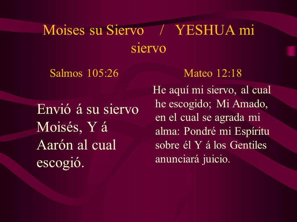Moises su Siervo / YESHUA mi siervo Salmos 105:26 Envió á su siervo Moisés, Y á Aarón al cual escogió. Mateo 12:18 He aquí mi siervo, al cual he escog