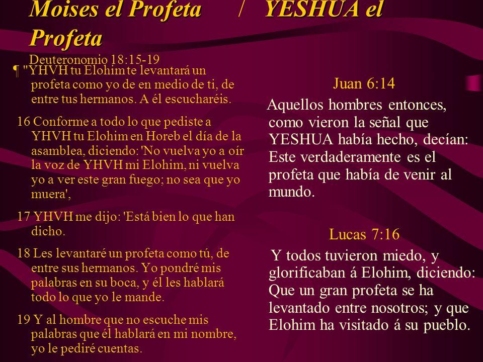 Moises el ProfetaYESHUA el Profeta Moises el Profeta / YESHUA el Profeta Deuteronomio 18:15-19 ¶