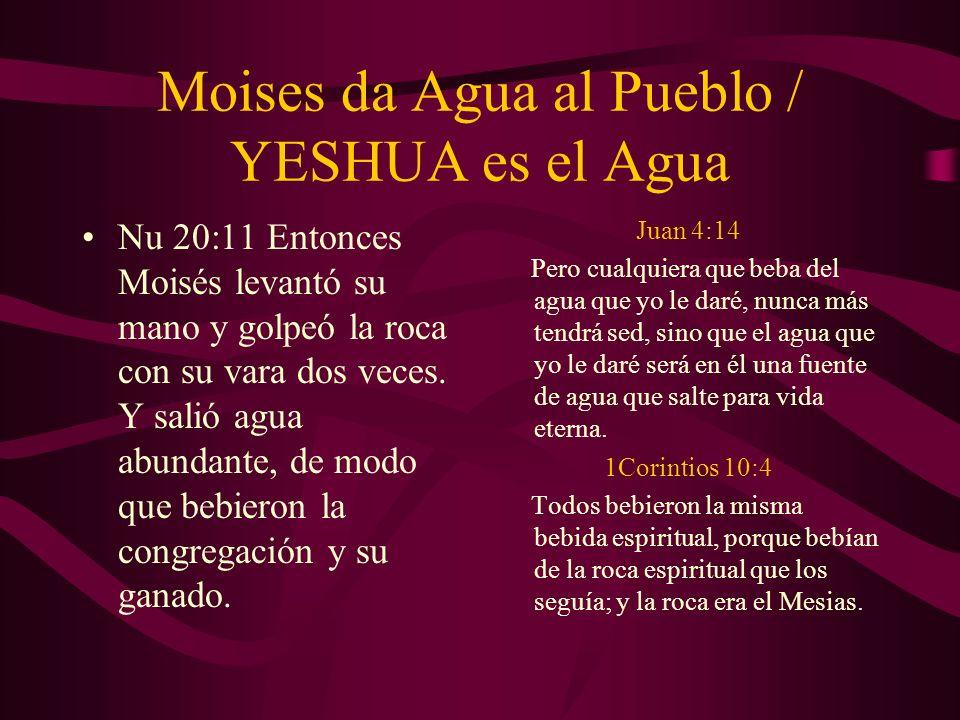 Moises da Agua al Pueblo / YESHUA es el Agua Nu 20:11 Entonces Moisés levantó su mano y golpeó la roca con su vara dos veces. Y salió agua abundante,