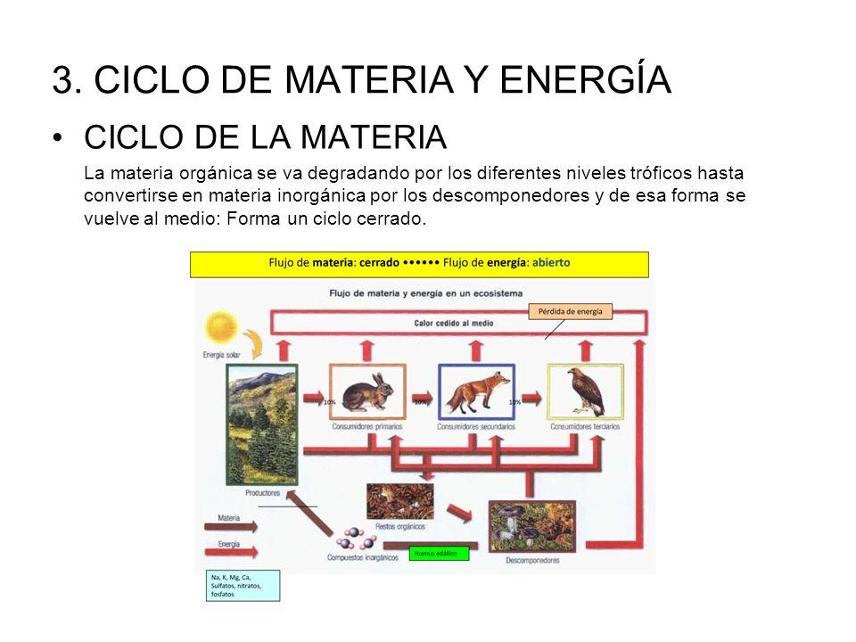 3. CICLO DE MATERIA Y ENERGÍA CICLO DE LA MATERIA La materia orgánica se va degradando por los diferentes niveles tróficos hasta convertirse en materi