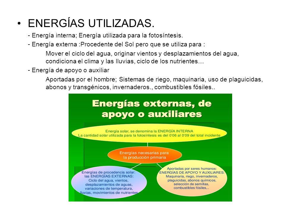 ENERGÍAS UTILIZADAS. - Energía interna; Energía utilizada para la fotosíntesis. - Energía externa :Procedente del Sol pero que se utiliza para : Mover