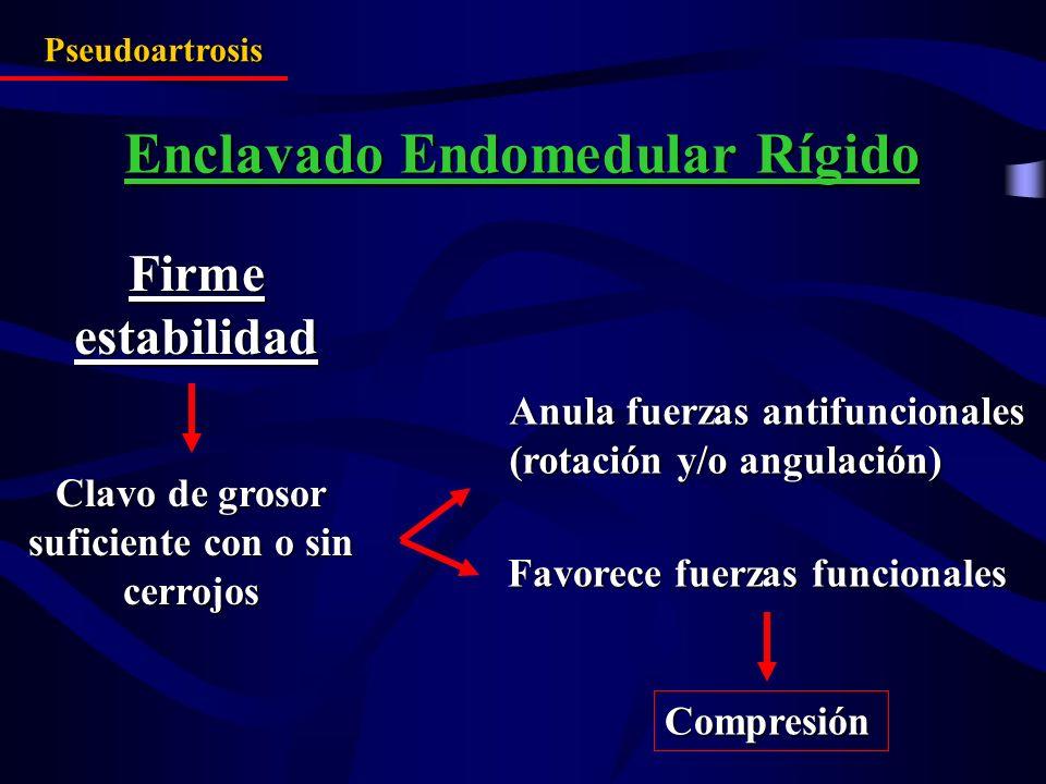 Firme estabilidad Anula fuerzas antifuncionales (rotación y/o angulación) Favorece fuerzas funcionales Compresión Pseudoartrosis Enclavado Endomedular
