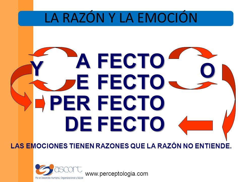 www.perceptologia.com Es preferible buen servicio con mala atención a mal servicio con buena atención.