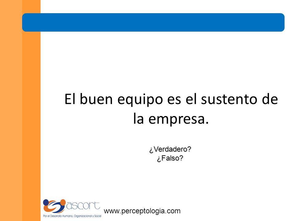 www.perceptologia.com El trabajo en equipo favorece el buen servicio al cliente ¿Verdadero ¿Falso