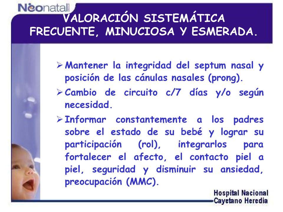 Mantener la integridad del septum nasal y posición de las cánulas nasales (prong). Cambio de circuito c/7 días y/o según necesidad. Informar constante