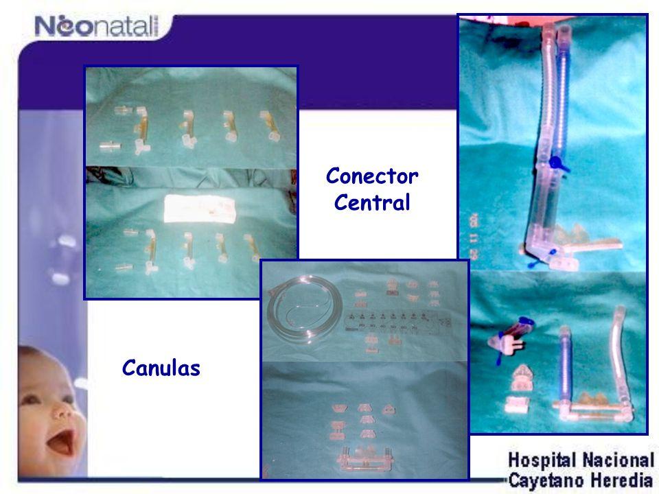 Canulas Conector Central