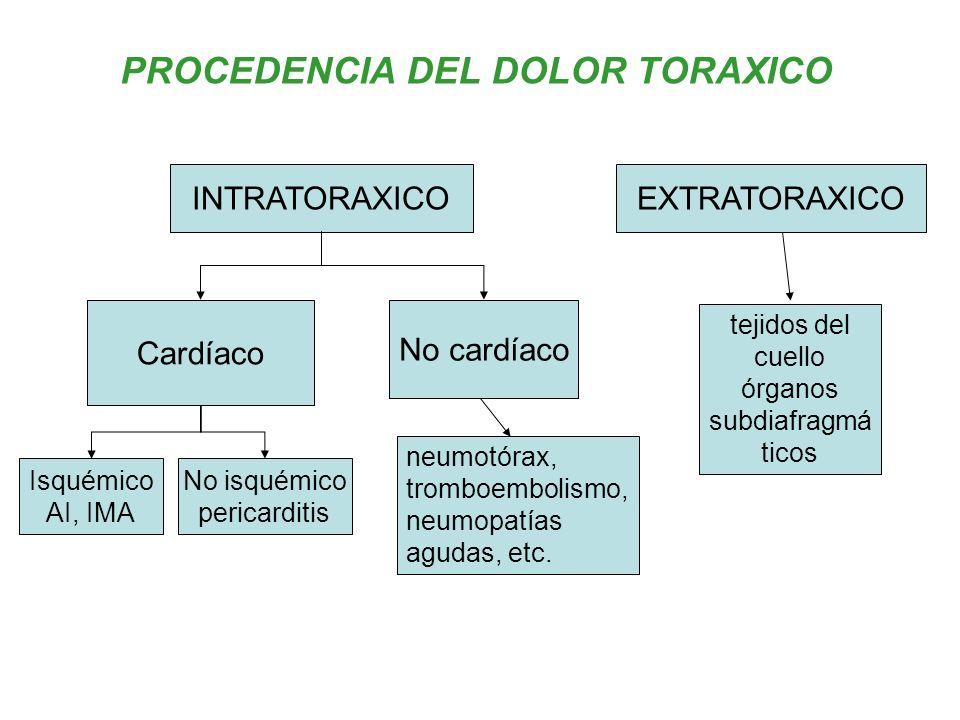 PROCEDENCIA DEL DOLOR TORAXICO INTRATORAXICOEXTRATORAXICO tejidos del cuello órganos subdiafragmá ticos Cardíaco No cardíaco Isquémico AI, IMA No isqu
