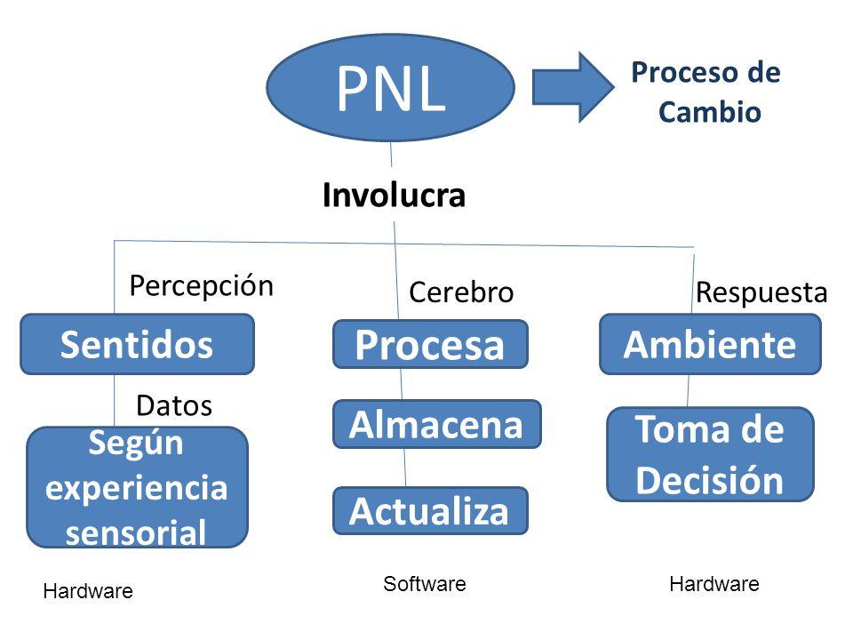 PNL Proceso de Cambio SentidosAmbiente Procesa Percepción CerebroRespuesta Almacena Actualiza Toma de Decisión Según experiencia sensorial Datos Invol