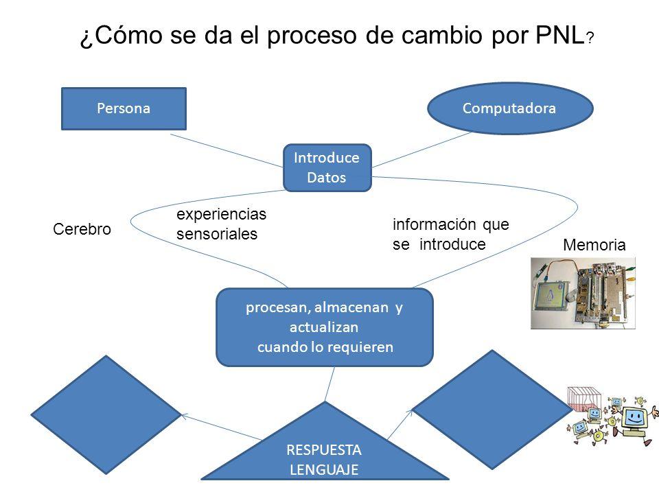 ¿Cómo se da el proceso de cambio por PNL ? Persona Computadora Introduce Datos Cerebro Memoria información que se introduce experiencias sensoriales p