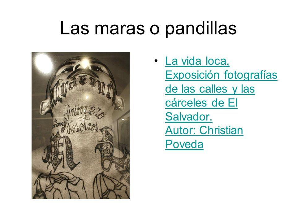 Las maras o pandillas La vida loca, Exposición fotografías de las calles y las cárceles de El Salvador. Autor: Christian PovedaLa vida loca, Exposició
