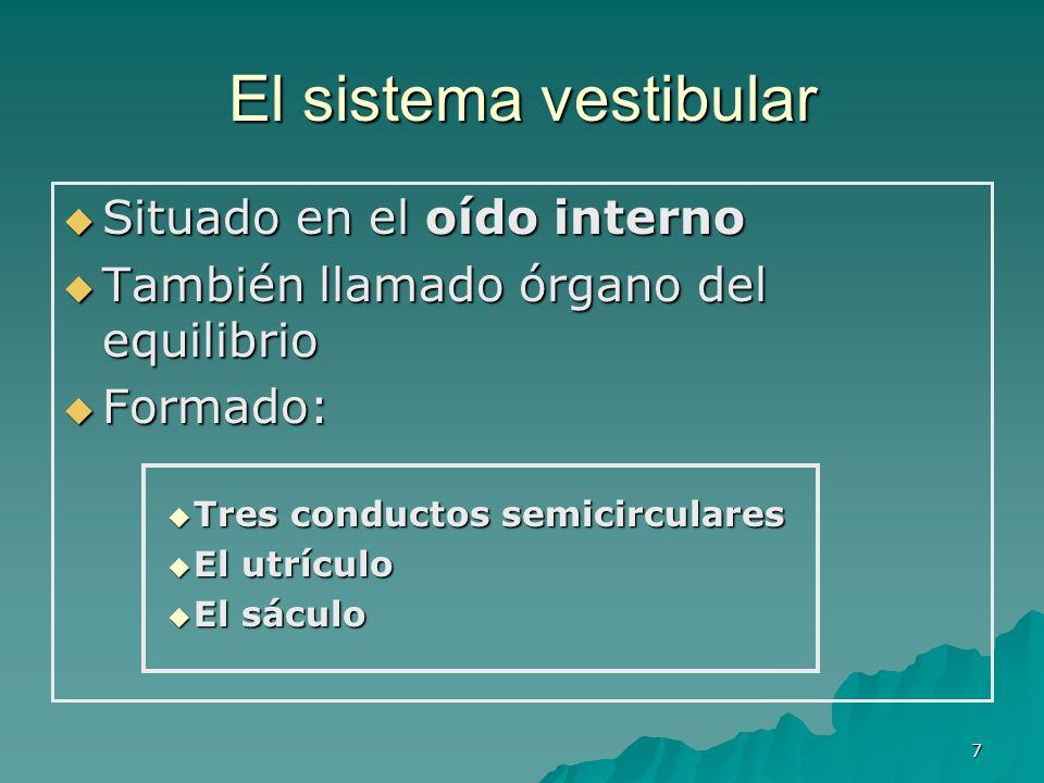 7 El sistema vestibular Situado en el oído interno Situado en el oído interno También llamado órgano del equilibrio También llamado órgano del equilib