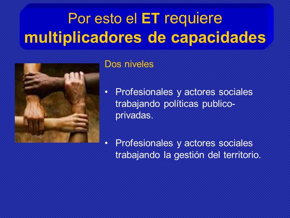 Por esto el ET requiere multiplicadores de capacidades Dos niveles Profesionales y actores sociales trabajando políticas publico- privadas.