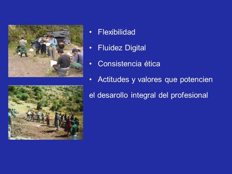 Flexibilidad Fluidez Digital Consistencia ética Actitudes y valores que potencien el desarollo integral del profesional
