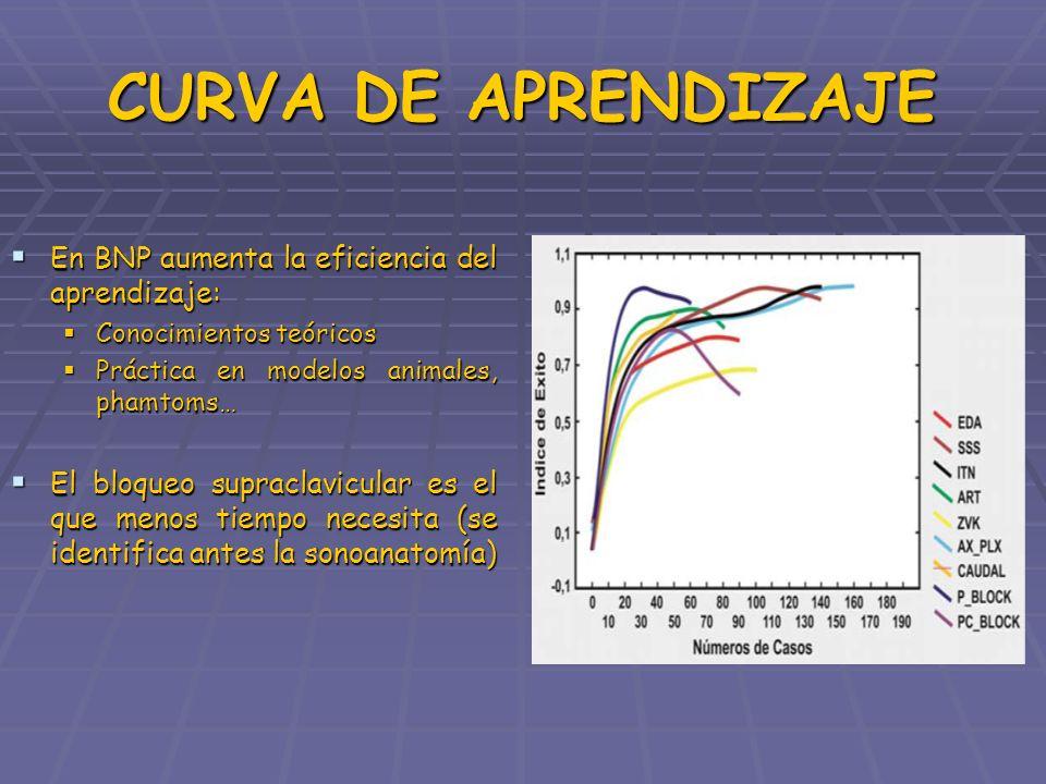 CURVA DE APRENDIZAJE En BNP aumenta la eficiencia del aprendizaje: En BNP aumenta la eficiencia del aprendizaje: Conocimientos teóricos Conocimientos