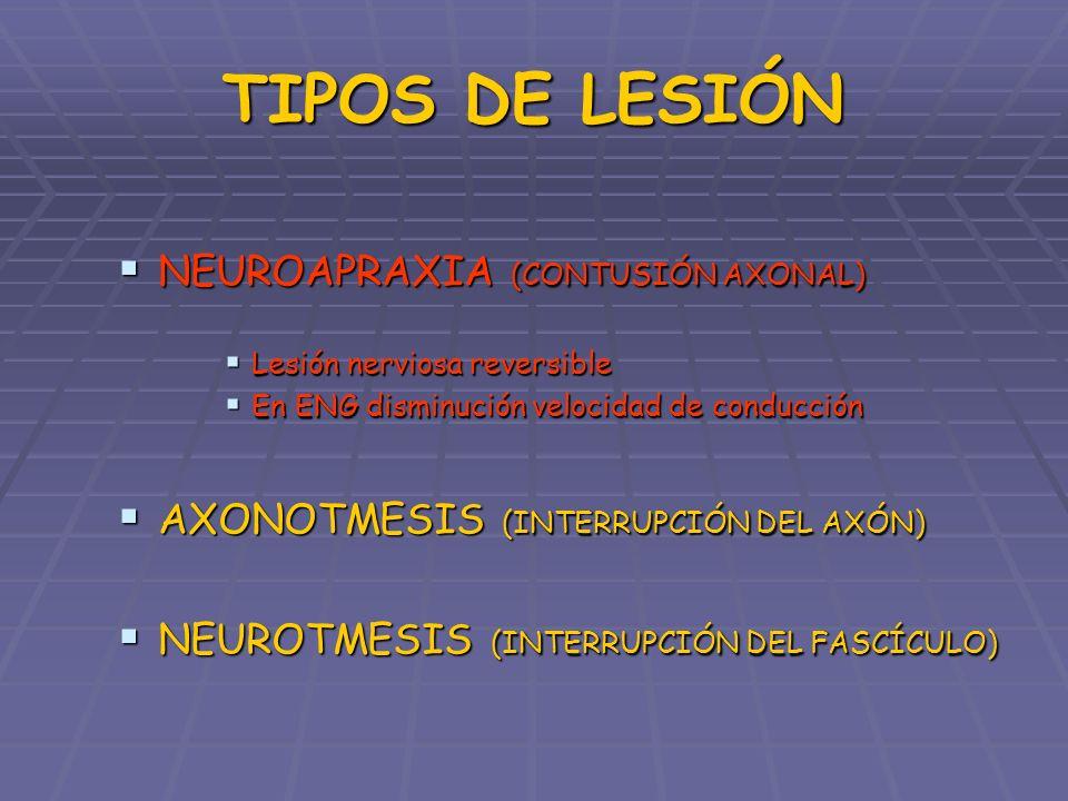 TIPOS DE LESIÓN NEUROAPRAXIA (CONTUSIÓN AXONAL) NEUROAPRAXIA (CONTUSIÓN AXONAL) AXONOTMESIS (INTERRUPCIÓN DEL AXÓN) AXONOTMESIS (INTERRUPCIÓN DEL AXÓN) Preservación del perineuro Preservación del perineuro Inicio regeneración a las 6 sem Inicio regeneración a las 6 sem Mejor regeneración en jóvenes y lesiones distales Mejor regeneración en jóvenes y lesiones distales NEUROTMESIS (INTERRUPCIÓN DEL FASCÍCULO) NEUROTMESIS (INTERRUPCIÓN DEL FASCÍCULO)