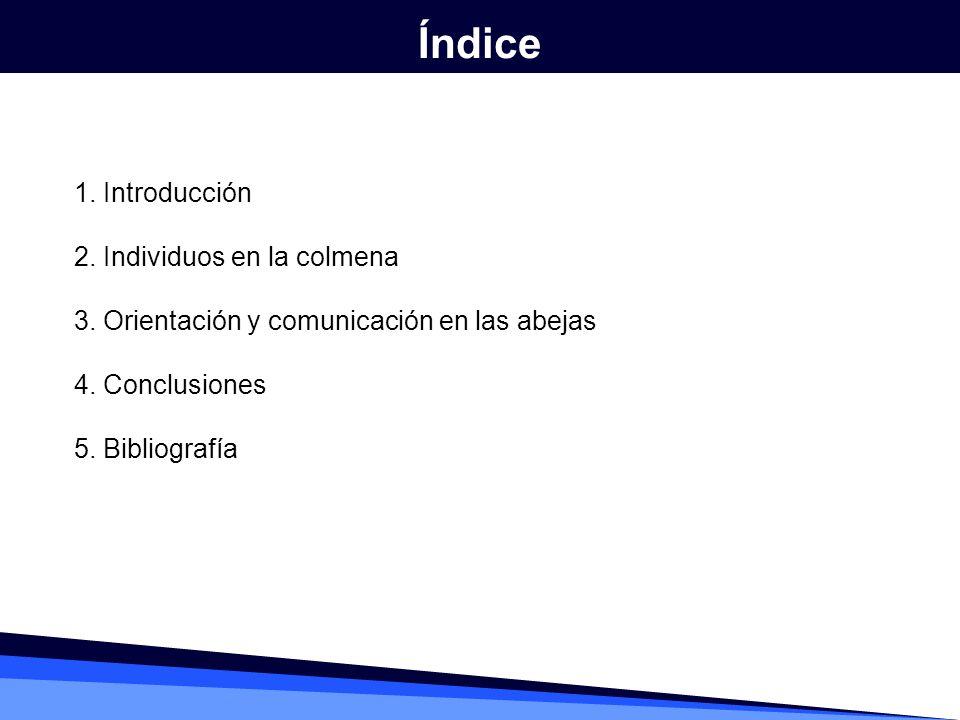 1. Introducción 2. Individuos en la colmena 3. Orientación y comunicación en las abejas 4. Conclusiones 5. Bibliografía Índice
