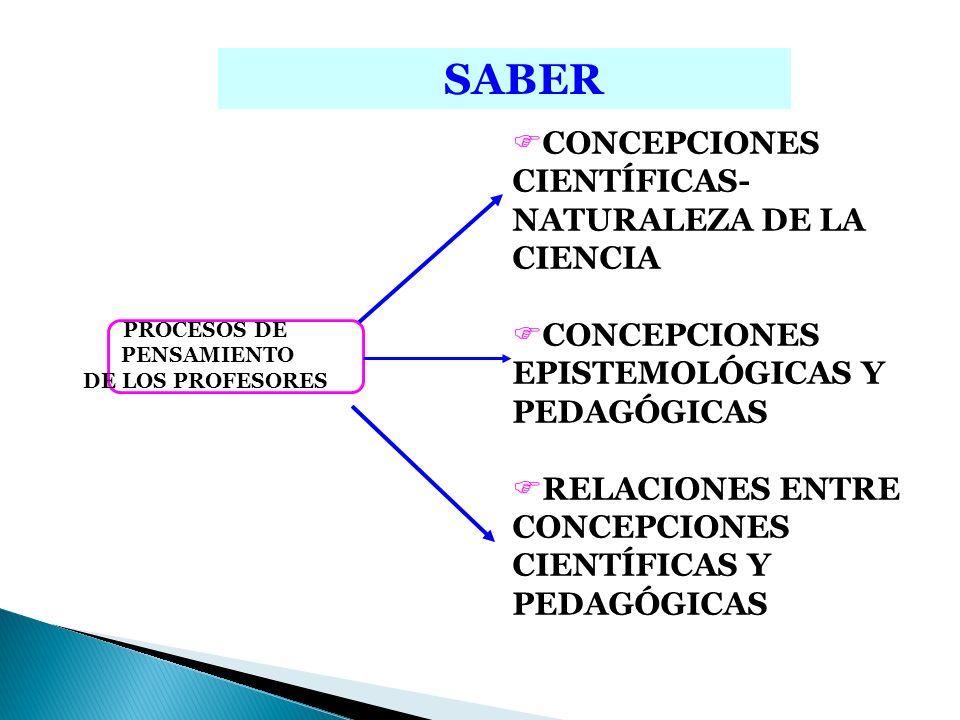 CONCEPTUAL METODOLÓGICO ESTRUCTURA CONCEPTUAL DEL SABER Conceptos Estructurantes Conceptos Específicos ACTITUDES Y VALORES UVE HEURÍSTICA Gowin, 1988 PROBLEMAS Objeto de Conocimiento ESPACIOS DE PRÁCTICA CONSTRUCCIÓN DE HABILIDADES