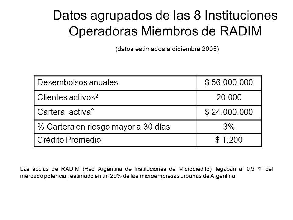 Datos agrupados de las 8 Instituciones Operadoras Miembros de RADIM (datos estimados a diciembre 2005) Desembolsos anuales$ 56.000.000 Clientes activos 2 20.000 Cartera activa 2 $ 24.000.000 % Cartera en riesgo mayor a 30 días3% Crédito Promedio$ 1.200 Las socias de RADIM (Red Argentina de Instituciones de Microcrédito) llegaban al 0,9 % del mercado potencial, estimado en un 29% de las microempresas urbanas de Argentina