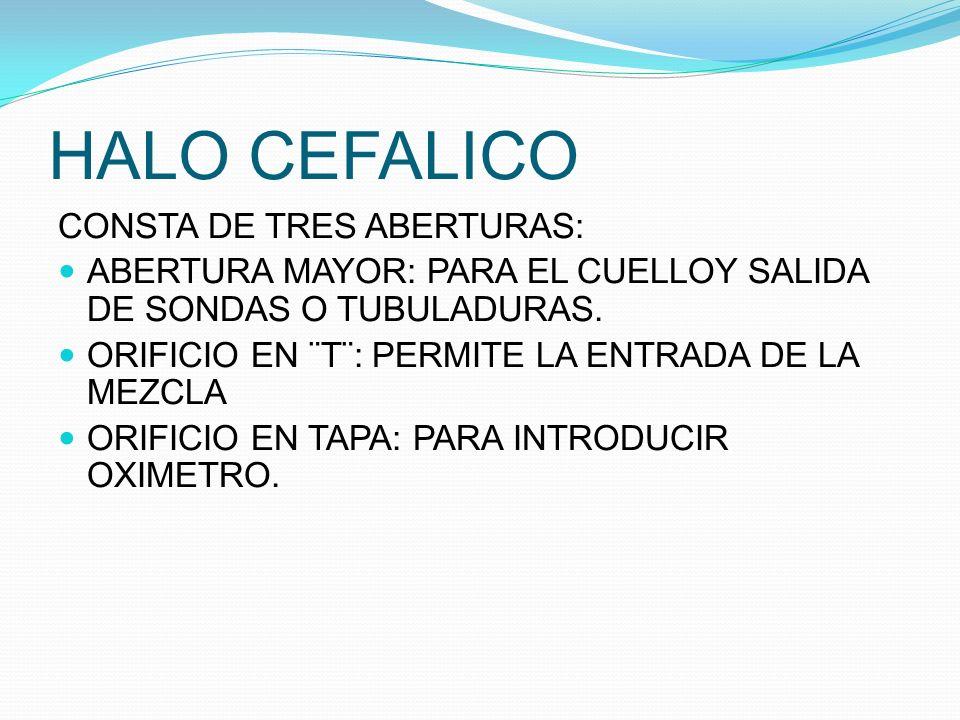 HALO CEFALICO CONSTA DE TRES ABERTURAS: ABERTURA MAYOR: PARA EL CUELLOY SALIDA DE SONDAS O TUBULADURAS. ORIFICIO EN ¨T¨: PERMITE LA ENTRADA DE LA MEZC
