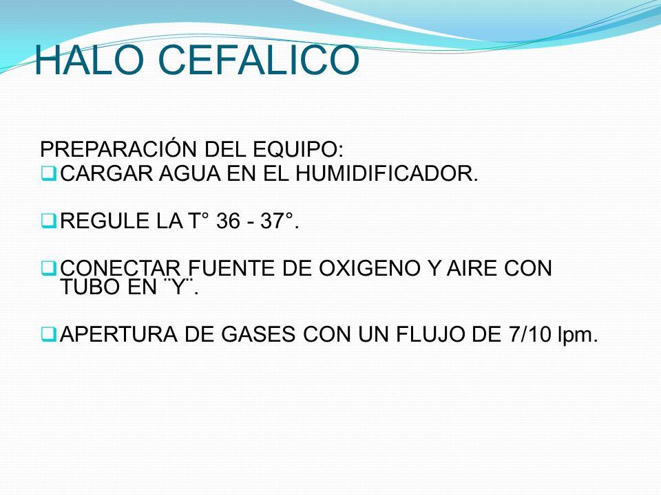 HALO CEFALICO PREPARACIÓN DEL EQUIPO: CARGAR AGUA EN EL HUMIDIFICADOR. REGULE LA T° 36 - 37°. CONECTAR FUENTE DE OXIGENO Y AIRE CON TUBO EN ¨Y¨. APERT