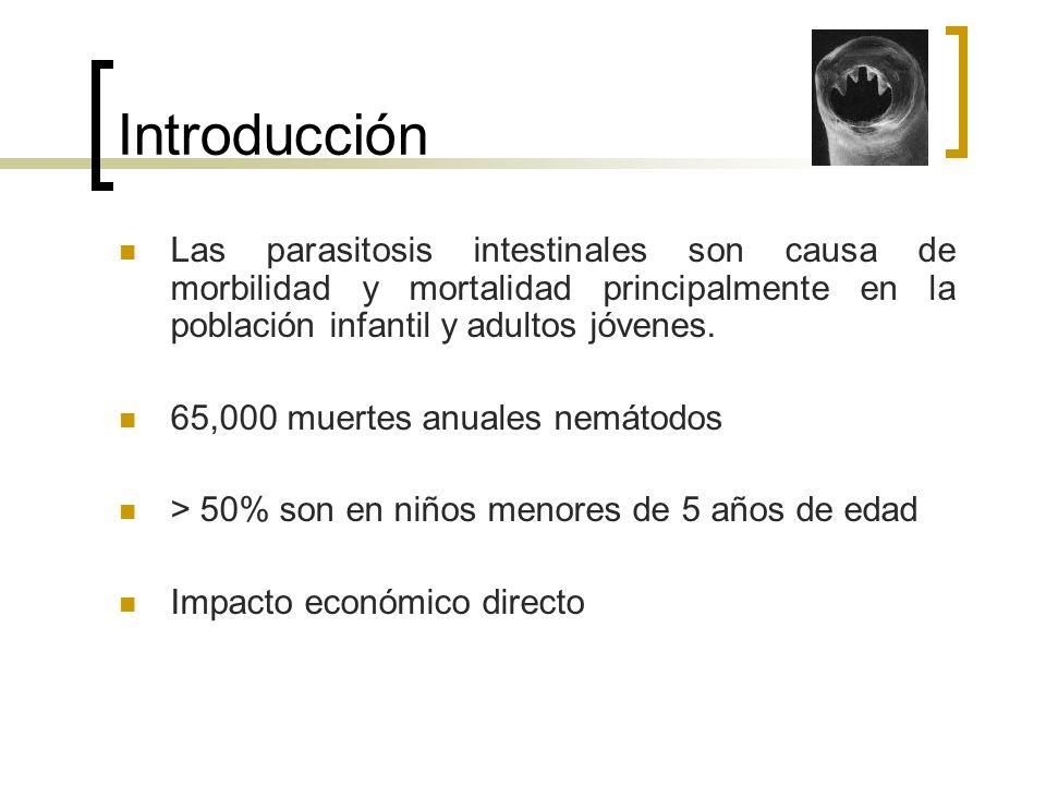 Introducción Las parasitosis intestinales son causa de morbilidad y mortalidad principalmente en la población infantil y adultos jóvenes. 65,000 muert