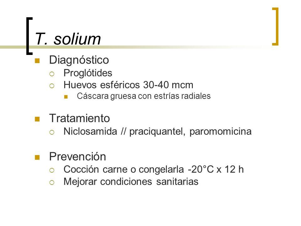 T. solium Diagnóstico Proglótides Huevos esféricos 30-40 mcm Cáscara gruesa con estrías radiales Tratamiento Niclosamida // praciquantel, paromomicina