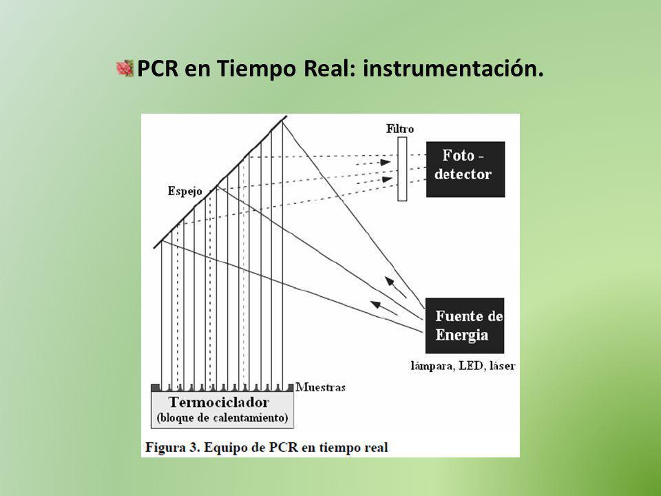 PCR en Tiempo Real: instrumentación.