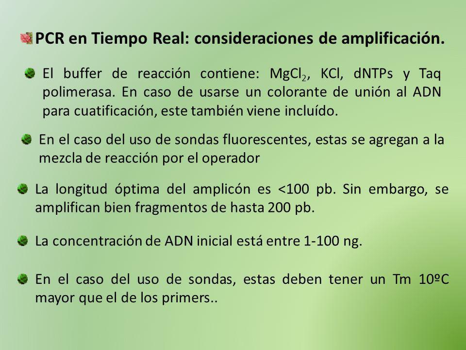 PCR en Tiempo Real: consideraciones de amplificación. El buffer de reacción contiene: MgCl 2, KCl, dNTPs y Taq polimerasa. En caso de usarse un colora