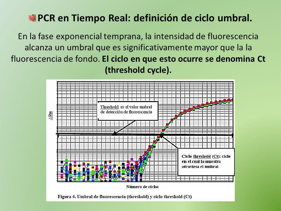PCR en Tiempo Real: definición de ciclo umbral. En la fase exponencial temprana, la intensidad de fluorescencia alcanza un umbral que es significativa