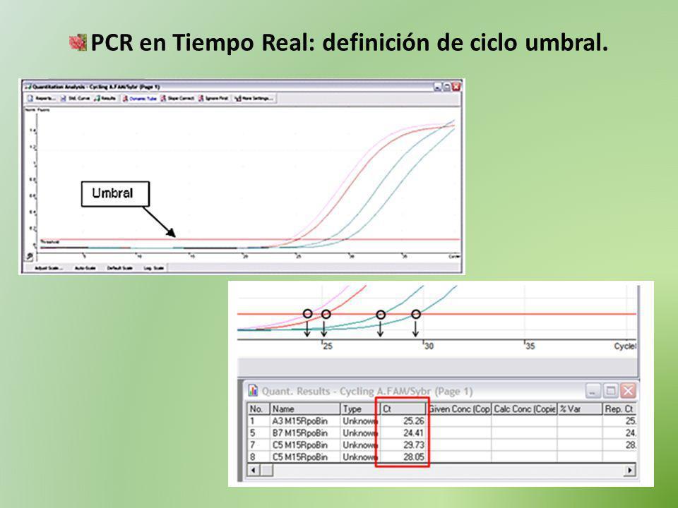 PCR en Tiempo Real: definición de ciclo umbral.