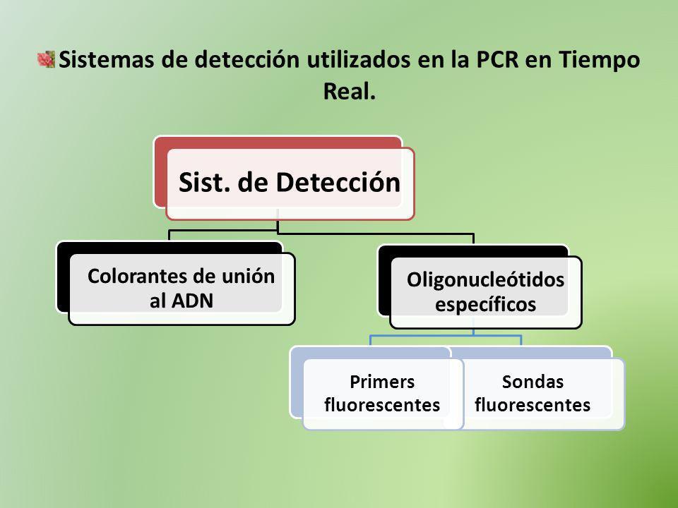 Sist. de Detección Colorantes de unión al ADN Oligonucleótidos específicos Sondas fluorescentes Primers fluorescentes Sistemas de detección utilizados