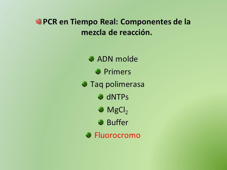 ADN molde Primers Taq polimerasa dNTPs MgCl 2 Buffer Fluorocromo PCR en Tiempo Real: Componentes de la mezcla de reacción.