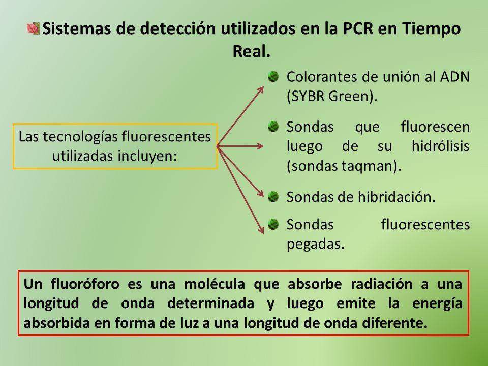 Las tecnologías fluorescentes utilizadas incluyen: Colorantes de unión al ADN (SYBR Green). Sondas que fluorescen luego de su hidrólisis (sondas taqma