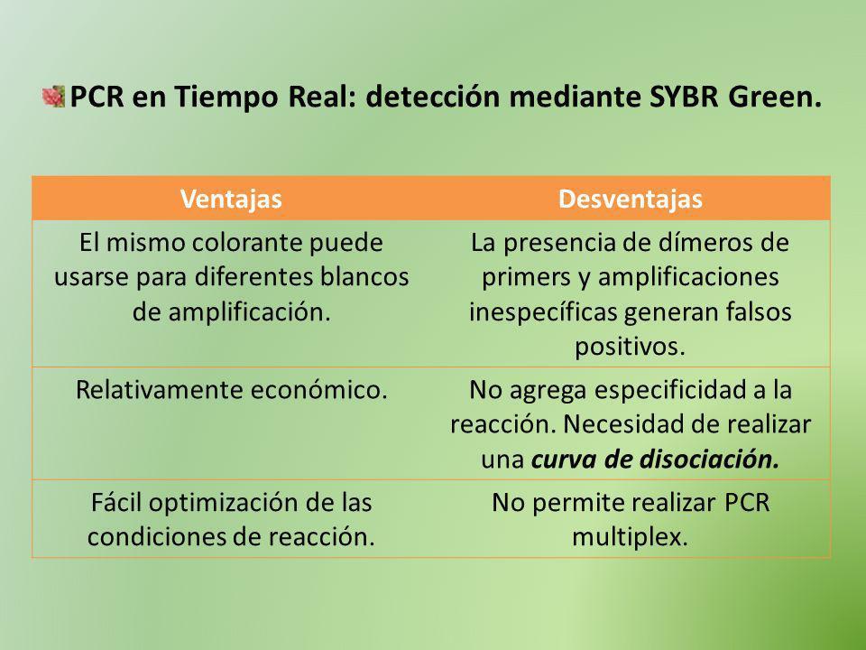 PCR en Tiempo Real: detección mediante SYBR Green. VentajasDesventajas El mismo colorante puede usarse para diferentes blancos de amplificación. La pr