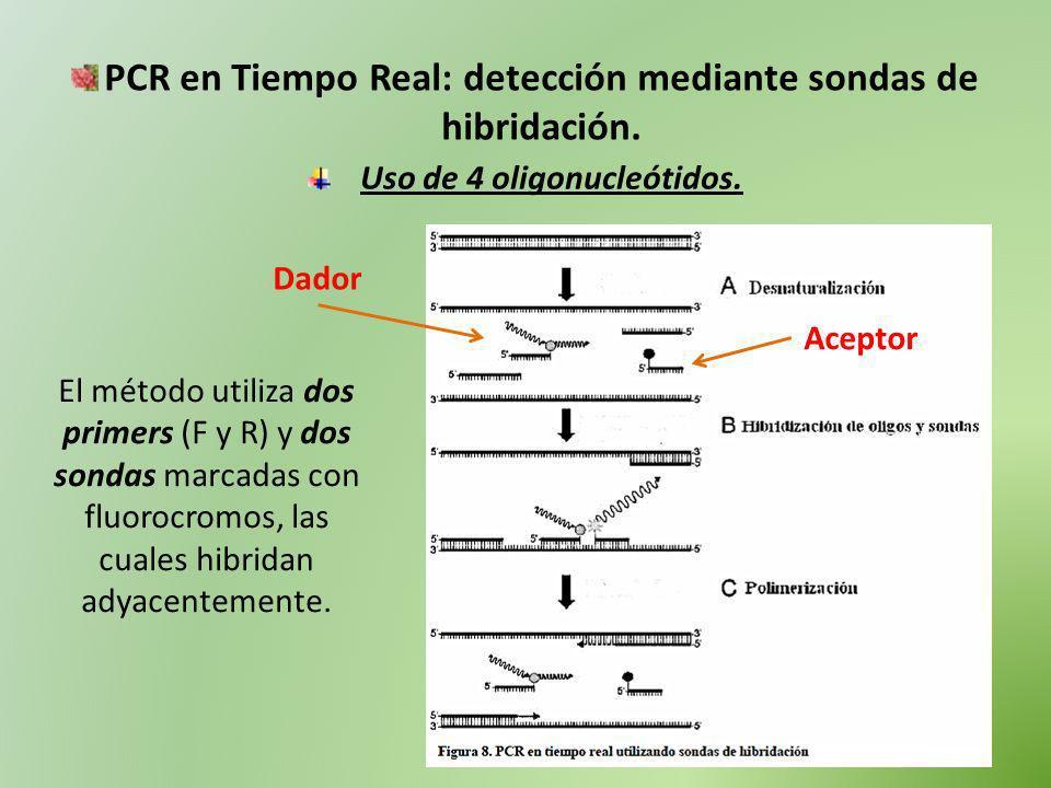 PCR en Tiempo Real: detección mediante sondas de hibridación. Uso de 4 oligonucleótidos. El método utiliza dos primers (F y R) y dos sondas marcadas c