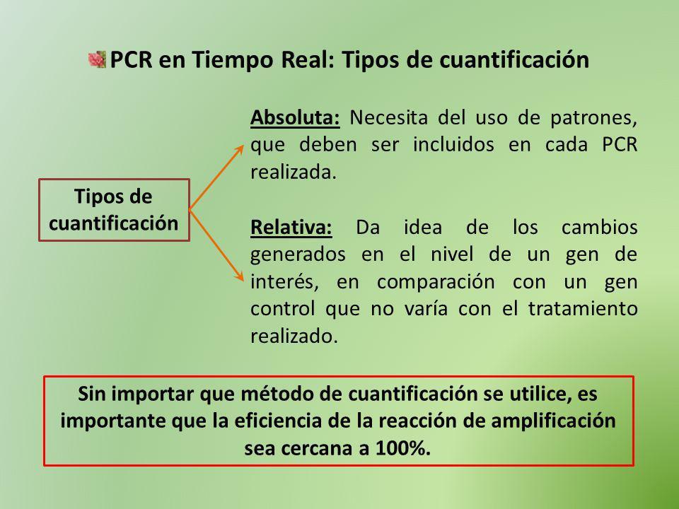 PCR en Tiempo Real: Tipos de cuantificación Tipos de cuantificación Absoluta: Necesita del uso de patrones, que deben ser incluidos en cada PCR realiz