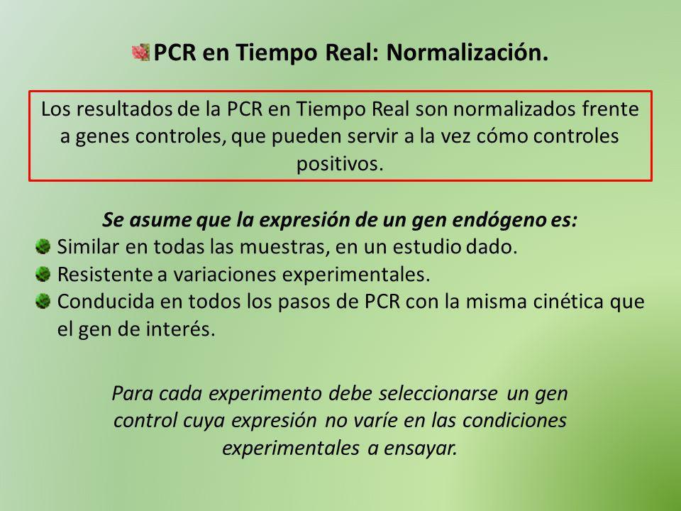 PCR en Tiempo Real: Normalización. Los resultados de la PCR en Tiempo Real son normalizados frente a genes controles, que pueden servir a la vez cómo