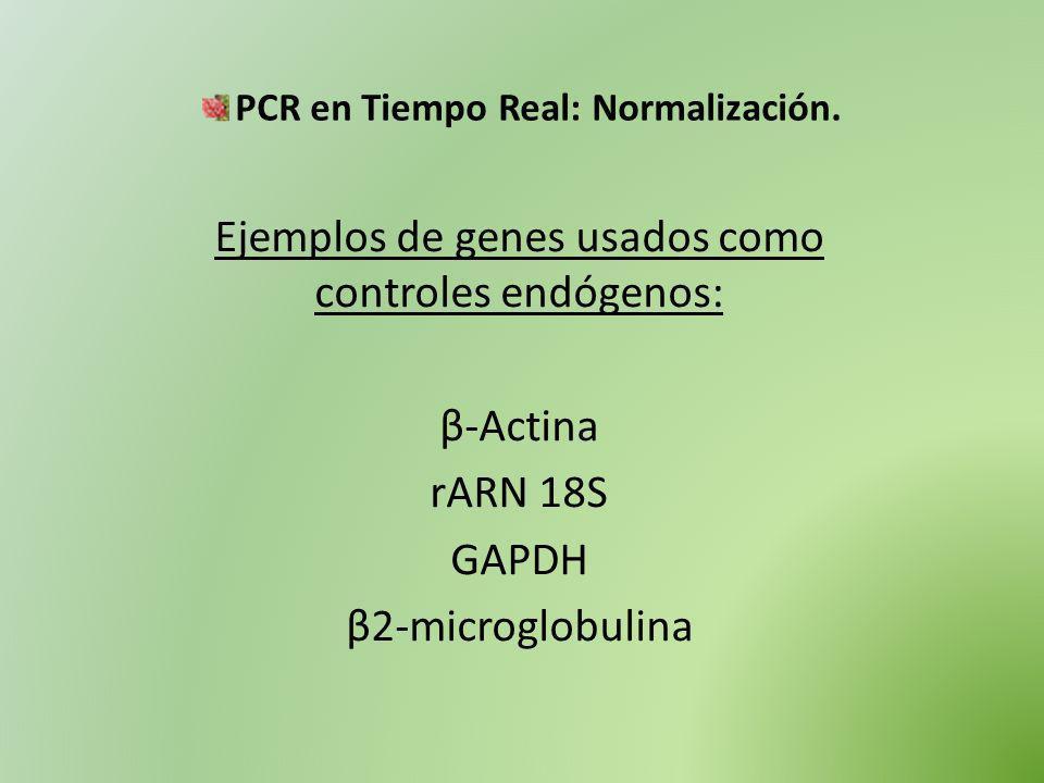 Ejemplos de genes usados como controles endógenos: β-Actina rARN 18S GAPDH β2-microglobulina PCR en Tiempo Real: Normalización.