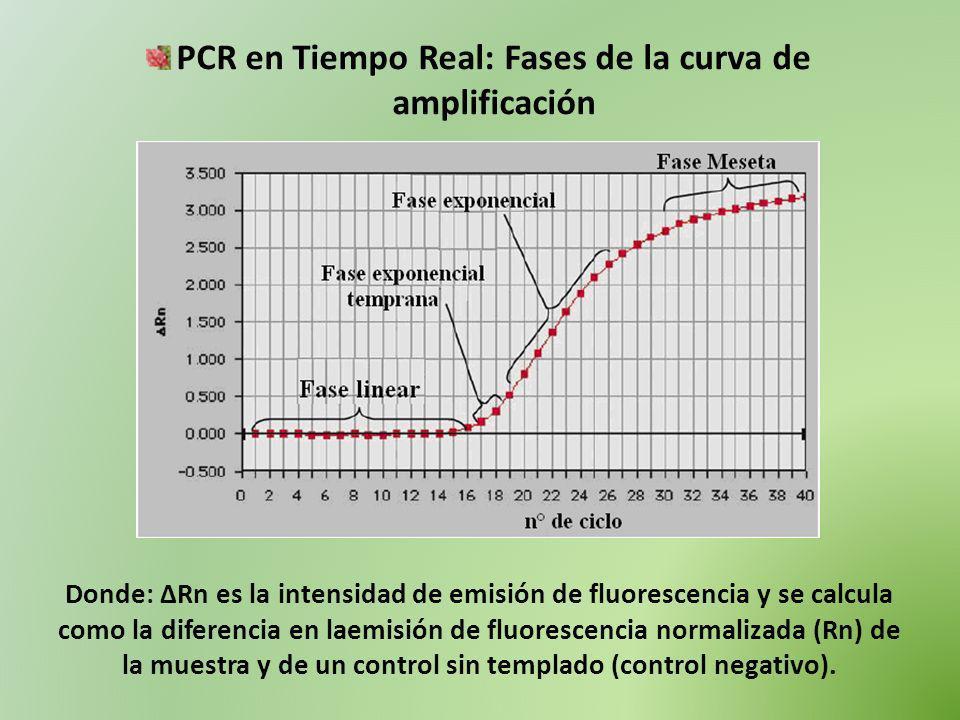 PCR en Tiempo Real: Fases de la curva de amplificación Donde: ΔRn es la intensidad de emisión de fluorescencia y se calcula como la diferencia en laem