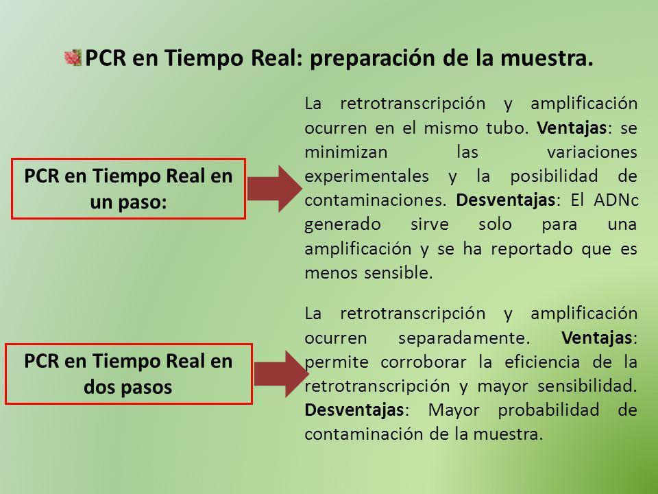 PCR en Tiempo Real: preparación de la muestra. PCR en Tiempo Real en un paso: La retrotranscripción y amplificación ocurren en el mismo tubo. Ventajas