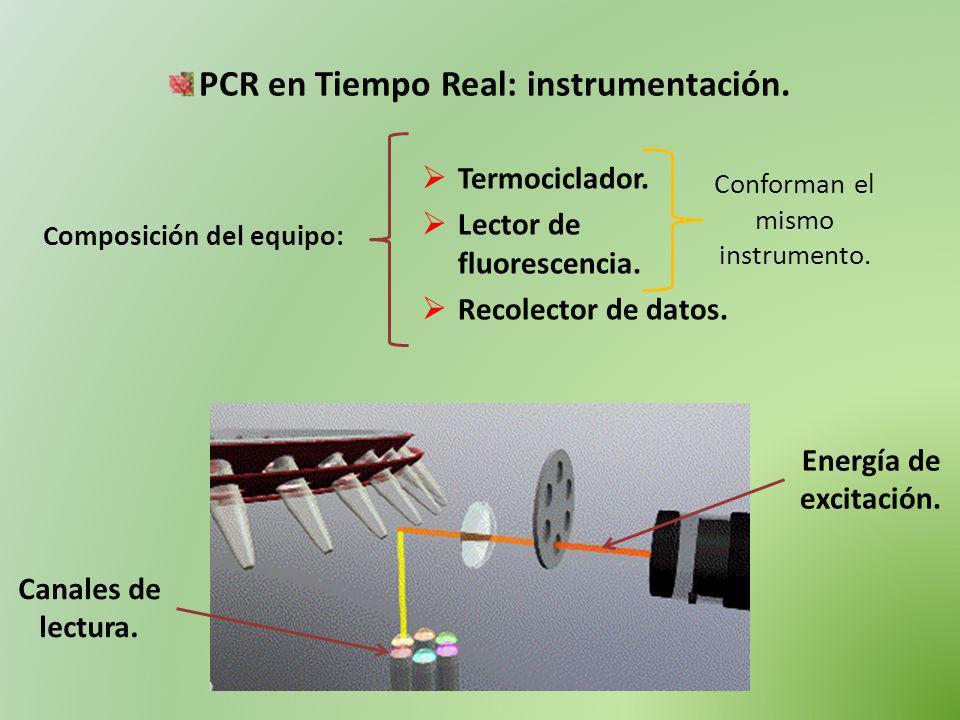 PCR en Tiempo Real: instrumentación. Composición del equipo: Termociclador. Lector de fluorescencia. Recolector de datos. Conforman el mismo instrumen