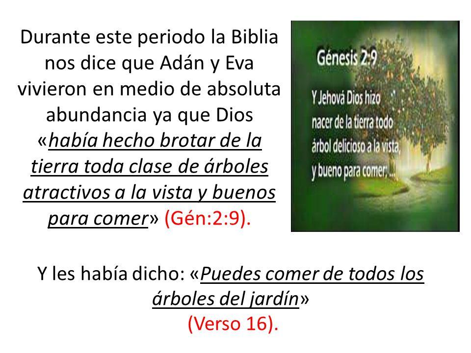 Durante este periodo la Biblia nos dice que Adán y Eva vivieron en medio de absoluta abundancia ya que Dios «había hecho brotar de la tierra toda clas