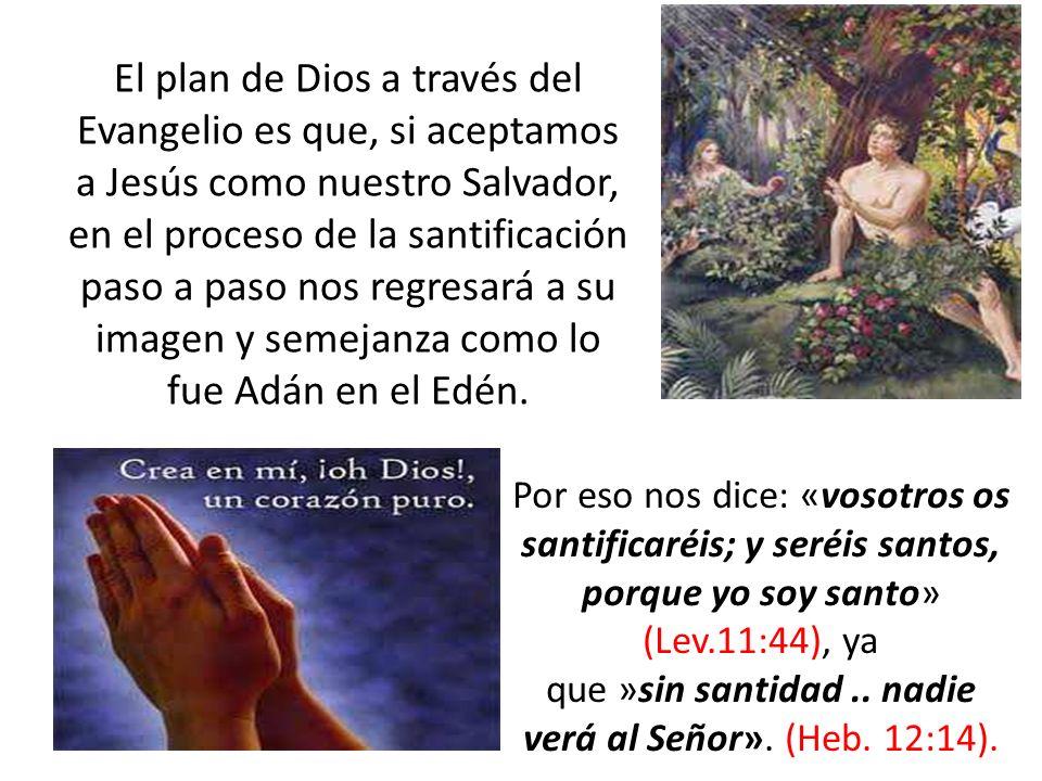 El plan de Dios a través del Evangelio es que, si aceptamos a Jesús como nuestro Salvador, en el proceso de la santificación paso a paso nos regresará