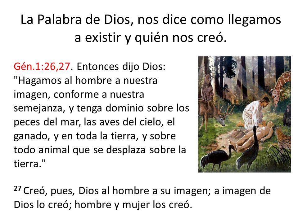 Note que el texto menciona tres veces que el hombre fue creado a «imagen» de Dios, esto se refiere a la parte física, y una ves menciona que fue creado a «semejanza» de Dios, lo cual se refiere a la parte espiritual de Dios.