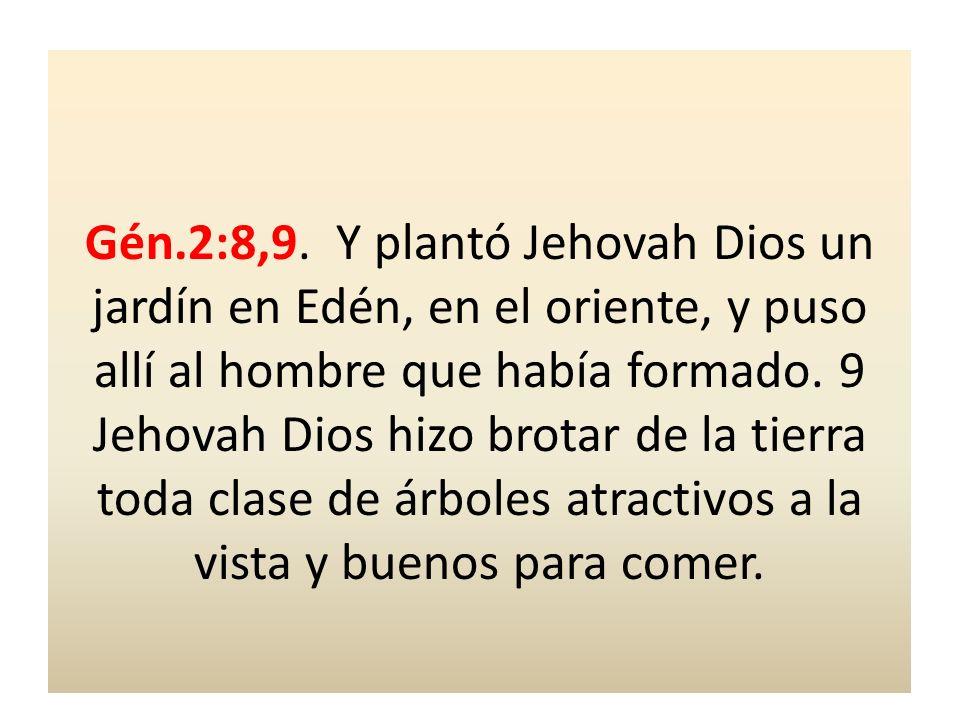 Gén.2:8,9. Y plantó Jehovah Dios un jardín en Edén, en el oriente, y puso allí al hombre que había formado. 9 Jehovah Dios hizo brotar de la tierra to