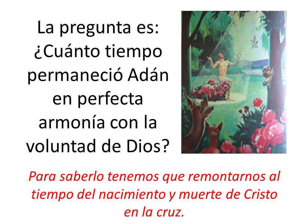 La pregunta es: ¿Cuánto tiempo permaneció Adán en perfecta armonía con la voluntad de Dios? Para saberlo tenemos que remontarnos al tiempo del nacimie