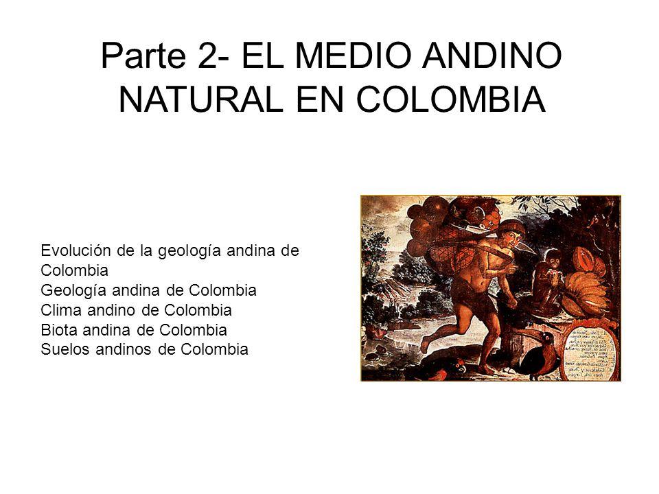 Evolución de la geología andina de Colombia Geología andina de Colombia Clima andino de Colombia Biota andina de Colombia Suelos andinos de Colombia P