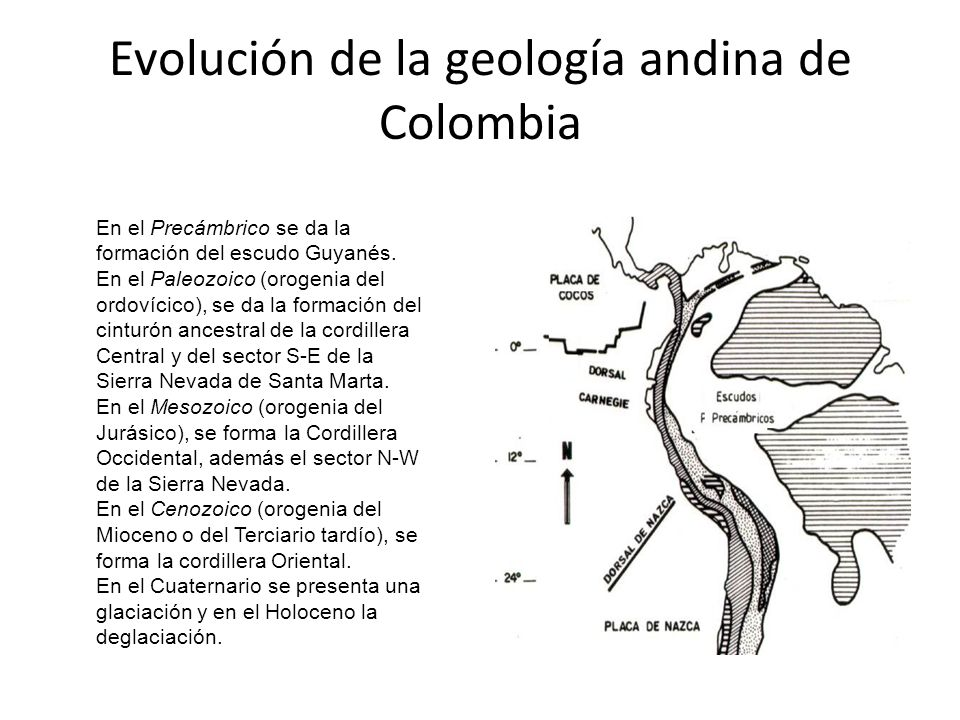 En el Precámbrico se da la formación del escudo Guyanés. En el Paleozoico (orogenia del ordovícico), se da la formación del cinturón ancestral de la c